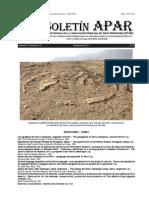 GEOGLIFOS CERRO CAMPANA.pdf