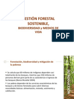 Gestion forestal sostenible.ppt