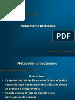 5.METABOLISMO BACTERIANO