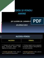 Curs de Pregatire Alcooli Fenoli Amine 2013