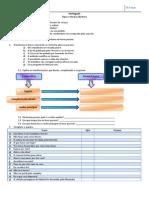 FT_Tipos e Formas de Frase
