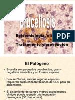 Brucelosis-Dr. WALLACH