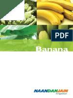 Riego Banano