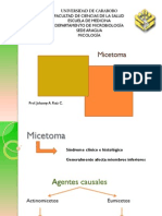 Micetomas y Eumicetomas (1)