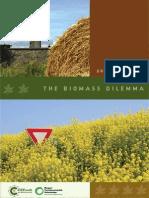 The Biomass Dilemma