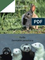 Doenças parasitárias.pptx