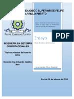 BDD.pdf