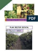 Plan Rector Zarzamora 2013