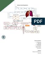 Sistema CardioRespiratorio