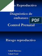 3.- Riesgo Reproductivo