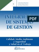 Integracion de Sistemas de Gestion