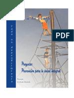 Proyecto Salud a La Vista PDF