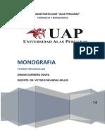 Monografia 01 - Tejido Muscular - Entregado