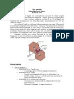 Fisiopatología Digestiva Falla Hepática