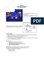 Fisiopatología Endocrina Diabetes
