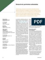 evaluacion yacimientos carbonatados.pdf