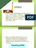 Lipidos a.a y Nucleotidos