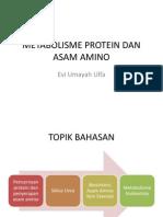 Pencernaan Protein Dan Penyerapan Asam Amino