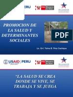 1.Prom. de La Salud y Det. Sociales