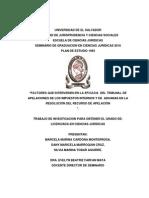 Factores Que Intervienen en La Eficacia Del Tribunal de Apelaciones de Los Impuestos Internos y de Aduanas en La Resolución Del Recurso de Apelación