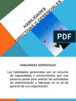 habilidadesdirectivasogerenciales-120920133651-phpapp01