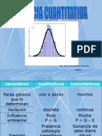 Caracte. Cuantitativos 2014-I
