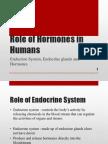 Role of Hormones in Humans