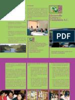 Triptico informativo - Desarrollo, género y ciudadanía, A.C
