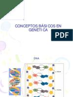 biologia celular - clase 15