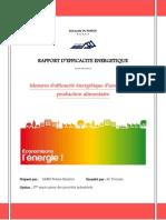 Rapport d'Efficacité Énergétique
