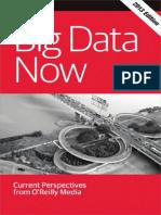 Big Data Now 2013