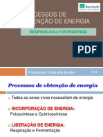 Processos de Obtenção de Energia 2