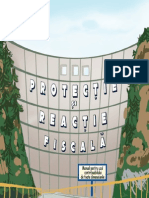Manual de Protectie in Caz de Control Fiscal