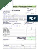 Cualitativa DHO - GERENCIA SSOMA - Versión 10 - Diciembre 2013