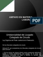 AMPARO EN MATERIA LABORAL.pptx