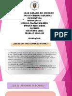 PRESENTACION DE INTERNET LIDICE ORTEGA.pptx