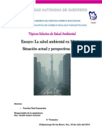 Ensayo TSSA-Salud Ambiental en México