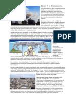 Causas de La Contaminación