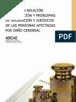Informe en Relación a La Situación y Problemas de Valoración y Jurídicos de Las Personas Afectadas Por Daño Cerebral
