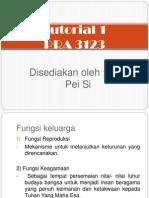 PRA 3123