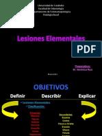 Lesiones Elementales presentaciones.pdf