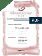 Programa de Negocio