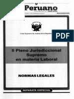 II Pleno Jurisdiccional CSJ