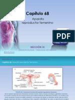 Raff Fisiologia Figuras c68 Reproductor Fem