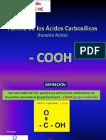 08 Familia Acidos