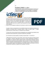 Nuevas Pruebas Saber11- 2014