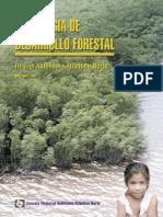 Estratrgia en El Sector Forestal en La Raan
