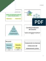 01-Constitucionalización Del Derecho