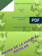 informe laboratorio.pptx