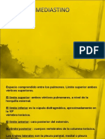 Fisiología SISTEMA RESPIRATORIO